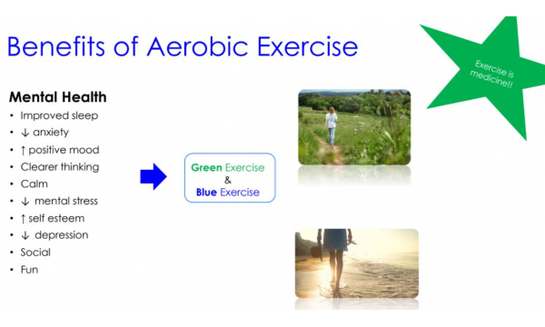 LAOIS FIT (week 3) - Aerobic Exercise & Resistance Training. What, Why and How? – Participant Resources